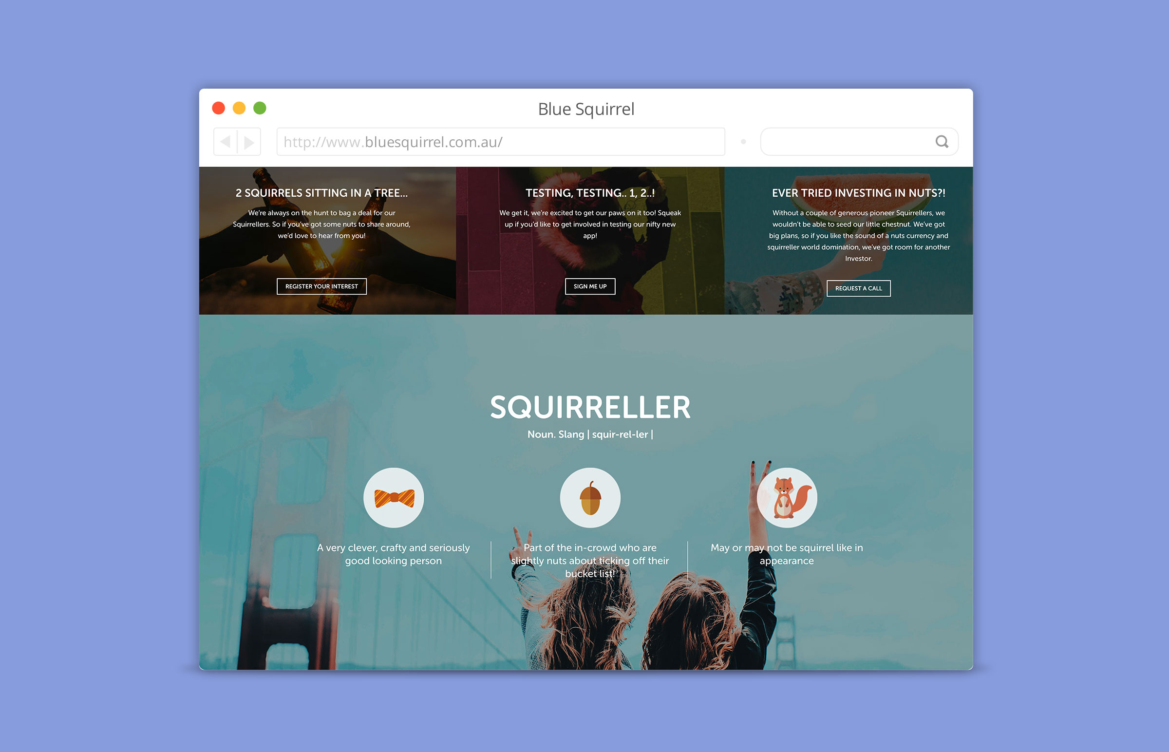 Blue Squirrel - Website by Thirteen DigitaL